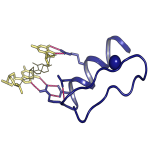 Protein-DNA Interaction